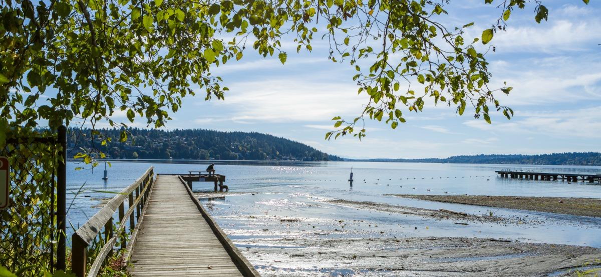 WindermereNorth_LakeForestPark_LakeWashingtonView.jpg